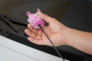 enfeite para antena do carro